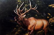 "Edward Aldrich"" A Call to The Rivals"" Elk Art Print S/N  30"" x 20"""