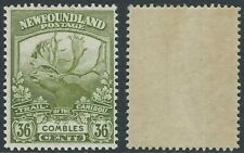 Newfoundland Scott 126: 36c Combles - Trail of the Caribou Issue, VF-NH