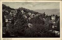 Badenweiler Schwarzwald  Postkarte ~1920/30 Gesamtansicht Berge im Hintergrund