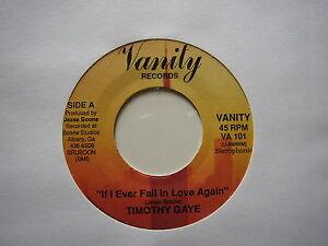 TIMOTHY GAYE: If I Ever Fall In Love Again (Vanity)  Nice 80's Indie Soul