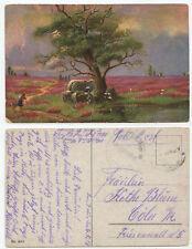 39178 - Hünengrab mit Baum in Heidelandschaft - Feldpostkarte, gelaufen 6.5.1918