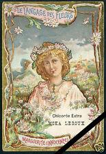 Vintage French Art Nouveau Trade Card Chicoree Moka Leroux Le Langage Des Fleur