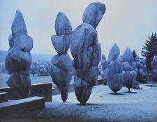 CHRISTO WRAPPED Trees poster immagine stampa d'arte 30x40cm-SPEDIZIONE GRATUITA
