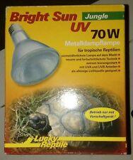reptile lamp bulb