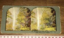 MULTNOMAH FALLS OREGON ANTIQUE 1899 INGERSOLL Colour Stereoview
