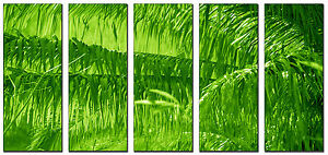Spring Forest Leaves Photo Art on Canvas Picture Framed Home and Office Decor