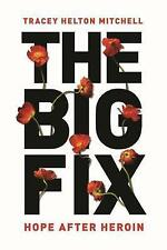 The Big Fix: Hope After Heroin by Mitchell, Tracey | Paperback Book | 9781580056