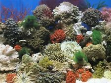 3 Aquarium backgrounds, Coral Reef, Atlantis, and Shipwreck 48x20,free ship