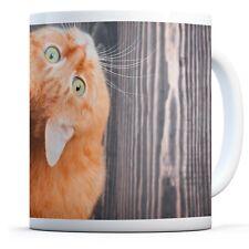 Cute Ginger Kitten - Drinks Mug Cup Kitchen Birthday Office Fun Gift #8925