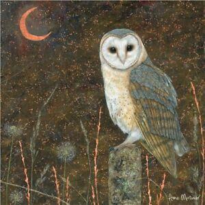 Barn Owl Greetings Card birthday Anne Mortimer blank inside wildlife