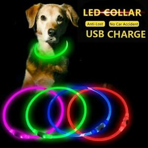 LED Dog Pets Light Up Collar Adjustable Sizes Flashing Rechargeable Safety J0H0