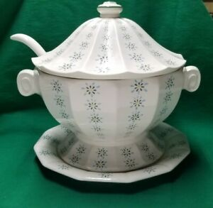 Blue and White Flower Soup Tureen with Lid Ladle and Underplate Floral