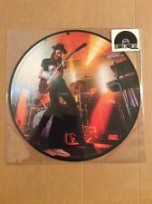"""RSD 2016 James Bay Chaos And The Calm Picture Disc 12"""" Vinyl Limited Edition"""