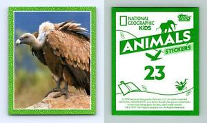 Vulture #23 National Geographic Kids Animals 2019 Topps Sticker