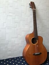 Anuenue bird guitar M100
