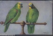Pretty Polly Parrots TUCK Oilette s. 3535 UK PC Circa 1910