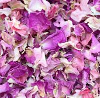 1 Litre Biodegradable Pinks Wedding Eco Confetti Natural Dried Petal 15 Guests