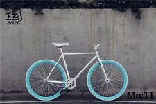 Retro Bicycle Vintage Bike DIY customize Old city street bike style chick cyclin