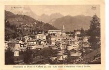Ferrovia delle Dolomiti -Panorama di Pieve di Cadore - Nello sfondo le Marmarole