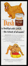 1951 Vintage Print Ad 50's Dash dog food cocker spaniel illustration art image