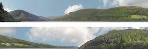 Forest hills N gauge Backscene (9''x10') – Art Printers ID201N