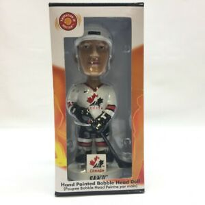 Team Canada Joe Sakic Bobble Dobbles Bobblehead