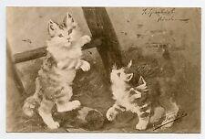 SPERLICH . Jolis Chats . Cats . Katze . Gato. Chatons