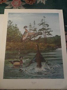 RAY HARM WOOD DUCK(VERTICAL)$240. VALUE-$130 DISCOUNT-NUMBERED #116 OF 500-MINT