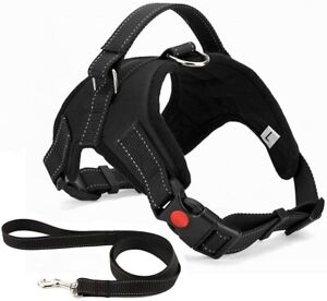 No Pull Dog Harness, Breathable Adjustable Comfort, Free Lead Included S, Black