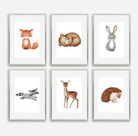 Baby Woodland Animal Nursery Art Prints Set Childrens Bedroom Pictures Decor NEW