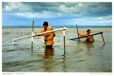 Postcard -  HAAF NETTERS ON THE SOLWAY        (Ref E14)