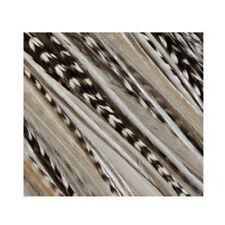4-6 inch Zebra Black White 100% Real Hair 5 Feather Extensions bonded at the tip