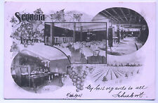 Private Mailing Card Sequoia Cafe & Grill 1905 Fresno CA Postcard