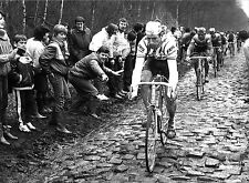 SEAN KELLY PARIS ROUBAIX 1984 COBBLESTONES BLACK & WHITE POSTER