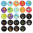 24-Count 1st Year Baby Milestone Monthly Stickers for Scrapbook Keepsake Journal
