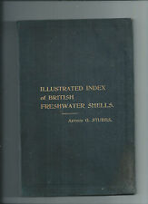 ILLUSTRATED INDEX OF BRITISH FRESHWATER SHELLS - STUBBS -1907