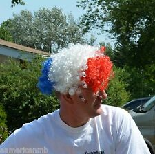 LED Light Up Patriotic Wig 4th of July Red Blue White Patriot Curled Curly Hair