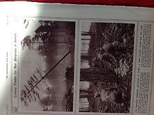 M2q ephemera ww1 picture 1917 Canadian foresters battalion Surrey at work