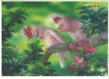 parrot white 3D Lenticular Holographic Stereoscopic Picture Wall Art