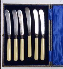 Set Of Antique Celluloid Butter Spreaders In Original Case Sterling Ferrules?