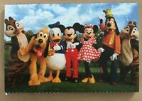 New Walt Disney World Parks Mickey and Friends Deluxe Postcard Set of 10
