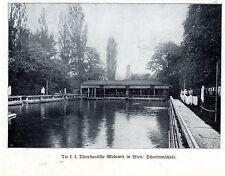 La k. k. theresianische academia en Viena escuela de natación documento de imagen de 1909