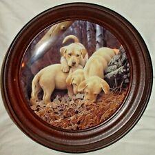 Where'D He Go Collector Plate by Gadamus Dog Days Laborador Puppies Bradford