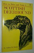Vintage How to Raise & Train a Scottish Deerhound Audrey Benbow Champion Photos