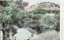 Lake Como, La Crosse, Wisconsin WI - Early 1900s Vintage Postcard