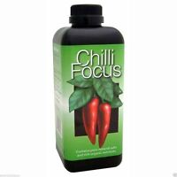 Chilli Focus 100ml Feed Food Plants Chilli Growth Technology Free Pipet