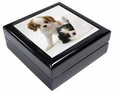 Cavalier King Charles Spaniels Keepsake/Jewellery Box Christmas Gift, AD-SKC10JB