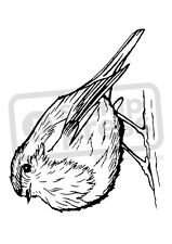 A7 'Cute Robin Bird' Unmounted Rubber Stamp (SP00007833)