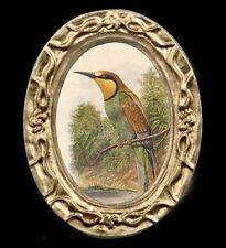 Bee Eater Bird Portrait Miniature Dollhouse Picture