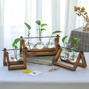 Plant Propagation Station Desktop Bulb Glass Vase with Wooden Stand Hydroponics